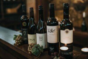 Vinoteka v Hotelu Mitra Ptuj - izbor vin