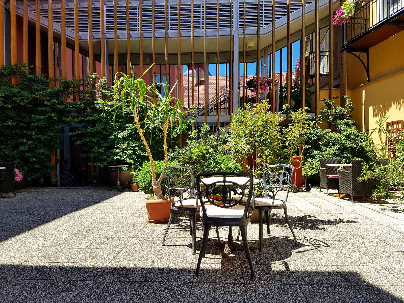 Dogodki in srečanja na Mitrovem vrtu